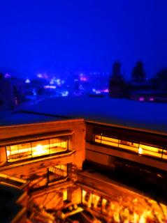 15葉山舘客室より夜雪.jpg