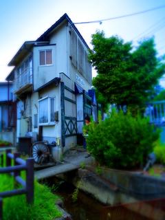 36上山コンチェルト.JPG