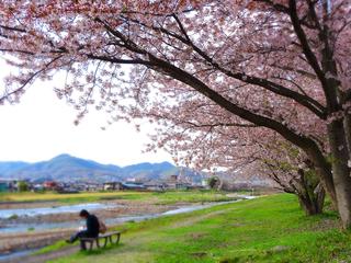 41須川河岸堤★.JPG