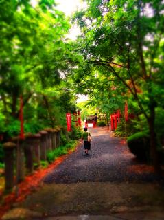 48栗川稲荷神社s.jpg