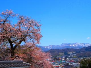 56西光寺★.JPG