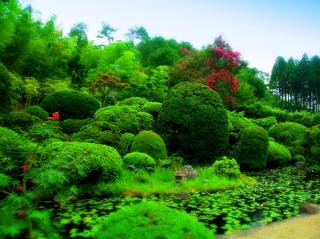 57浄光寺庭園s.jpg