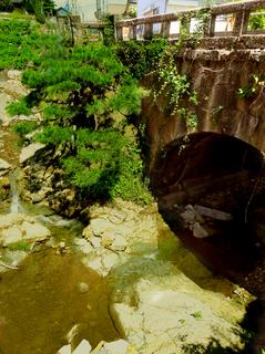 10中山橋01s.jpg