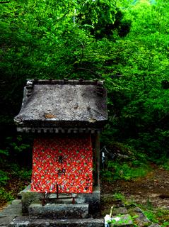 12浄林寺裏山s.jpg